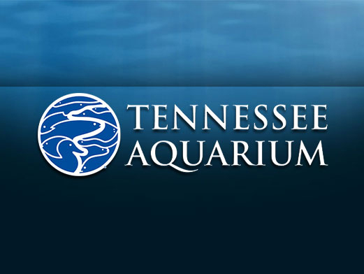 Tennessee Aquarium Coupons